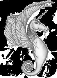 Fantasy Sea Horse - Pencil Sketch