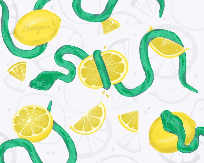 Vivayne lemony snakes on trend art licensing & surface pattern design